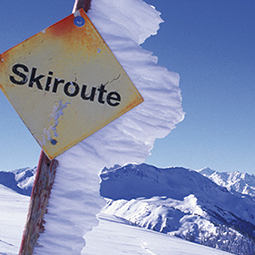 Ski & Snowboard Titel 2
