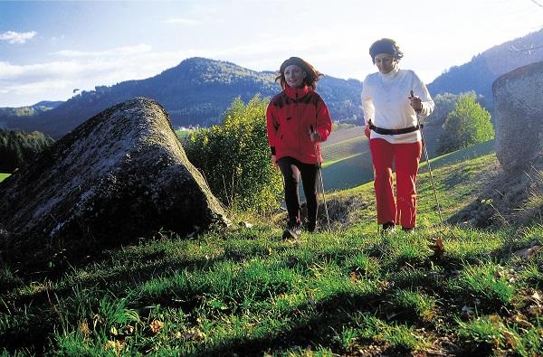 Vitalhotel Gosau - Der Dachstein ruft
